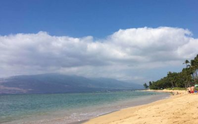 Maui Beach Safety Tips – Stay Safe in the Ocean on Your Hawaii Vacation