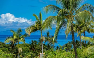 Why Visit Maui? We Top the List for Best Vacation Destinations in the World