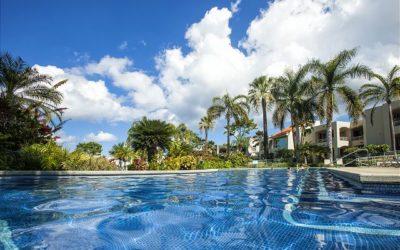 Your Dream Vacation Rental Awaits at the Palms at Wailea Maui
