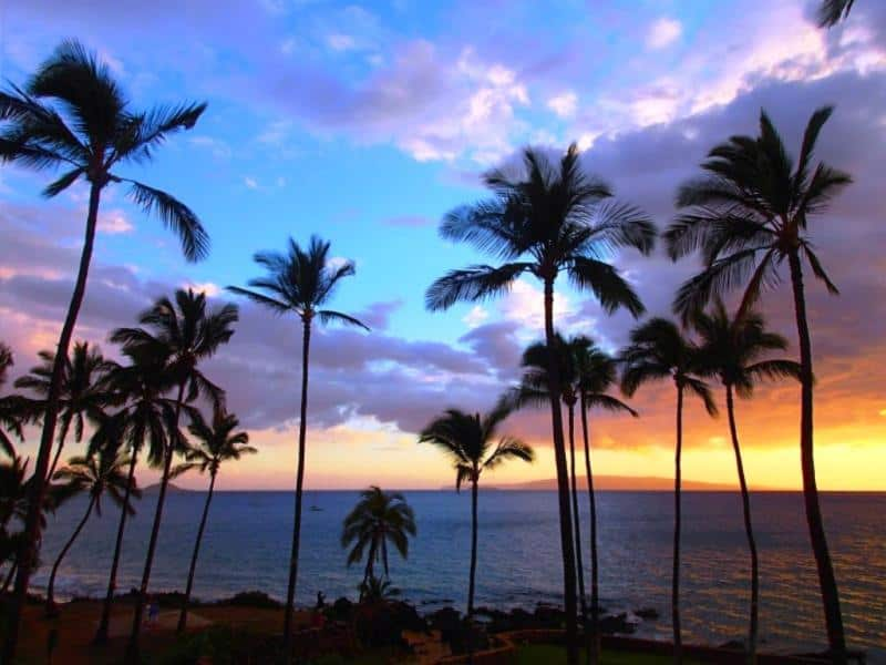 The Latest Maui Vacation Rental Deals
