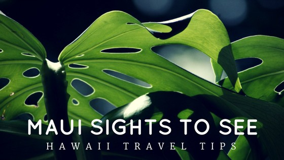 Must See Sightseeing in Maui Hawaii