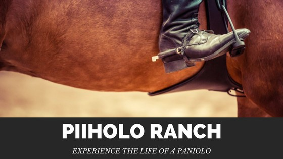 Experience the Life of a Paniolo at Piiholo Ranch