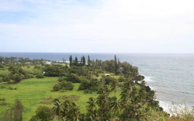 Top Things to Do in Hana for Your Next Maui Vacation