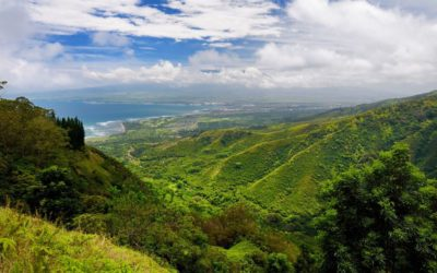 Safety Tips for Your Maui Hikes