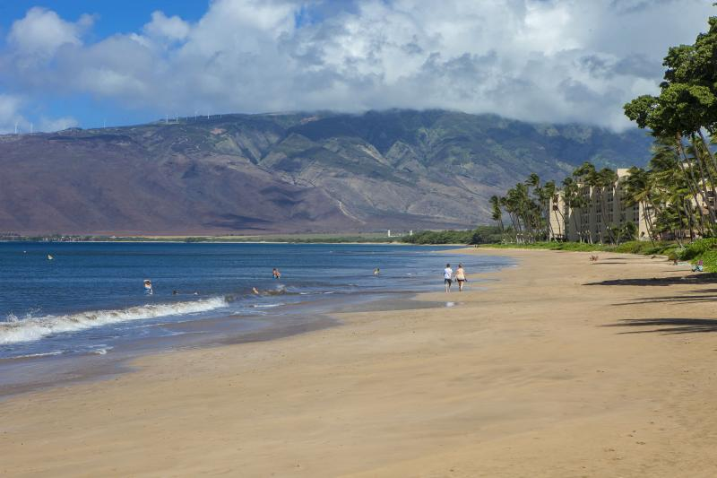 Maalaea Surf Resort is a Top Condo Rental Pick for Your Maui Vacation