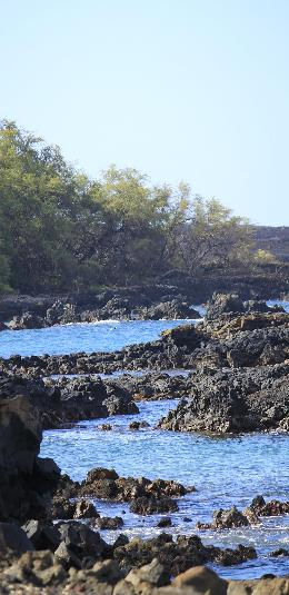 Take a Family Vacation on Maui, Part 2