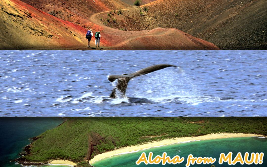 More Maui Adventures