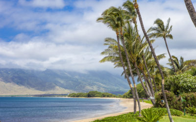 Get to Know Some of the Best North Kihei Vacation Rentals