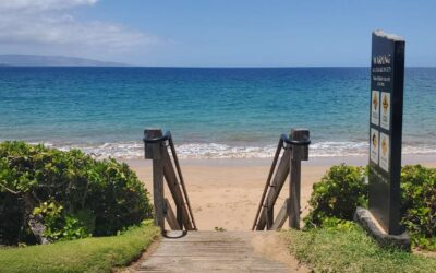 Top Tips for Enjoying Your Hawaii Vacation With Safety in Mind