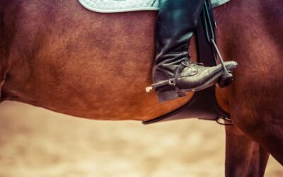 What to do in Hawaii: Horseback Riding on Maui